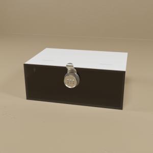 Lock Boxes, Specimen Boxes & Dessicator Storage Cabinets